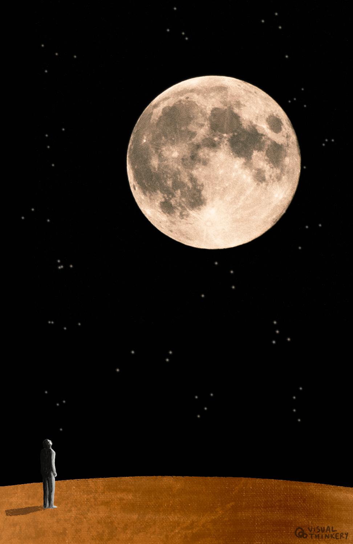 The fool moon photo